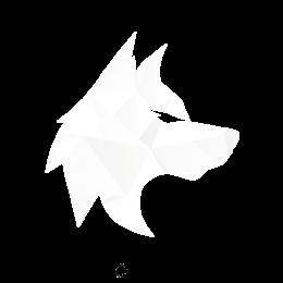Code's avatar