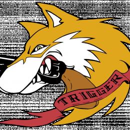 TriggerPL's avatar