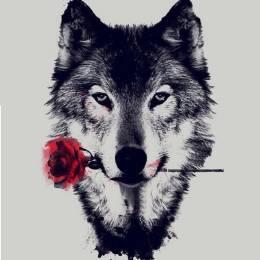 Wolfing's avatar