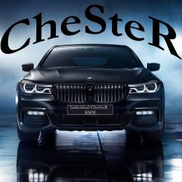 CheSteR_