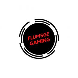 Flumsge [GER-RO]'s avatar