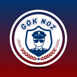 GoknOz's avatar