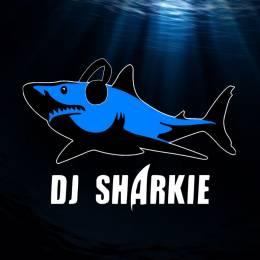 TFM_Sharkie