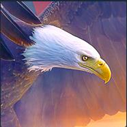 verbeekrj2903's avatar