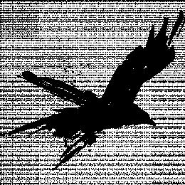 Raven.'s avatar