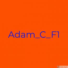 [VIVA] Adam_C_F1