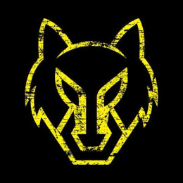 [YT] Gaming Wolf