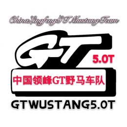 GT5.0T-20-XIAOCHEN