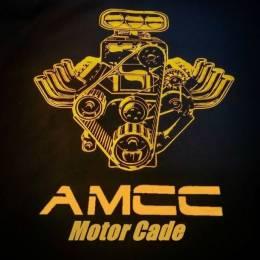 AMCC-101-Hua Zi