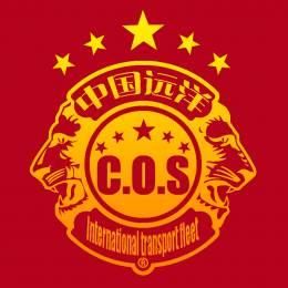 C.O.S-[020]Lao You's avatar