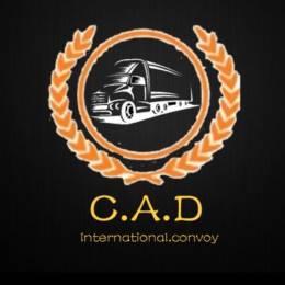 [C.A.D]-029
