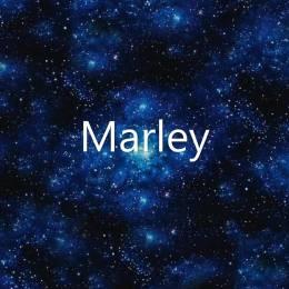 Marley24689