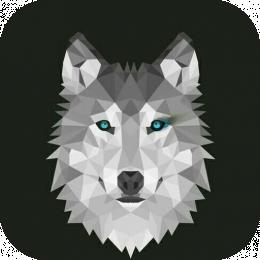 [GER] SimonPlays15's avatar