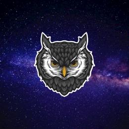 OctumHD's avatar