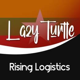 Lazy_Turtle