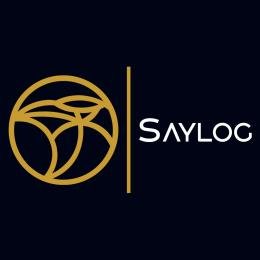 saylog31's avatar