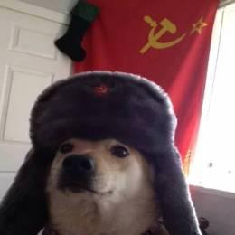 RussianDoge98