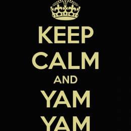 [WTLVTC-Manager] YamYam