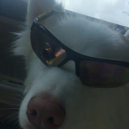 NightWOLF907's avatar