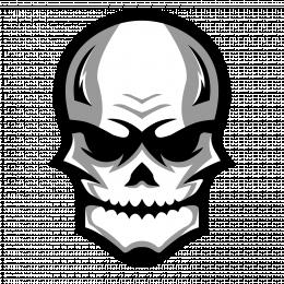 Maxer960TTV's avatar