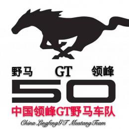 中国领峰GT野马车队