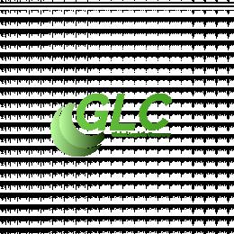 Global Logistic Company