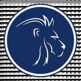 Lions Logistics Group