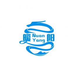 中国暖阳车队