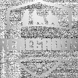 Renegados